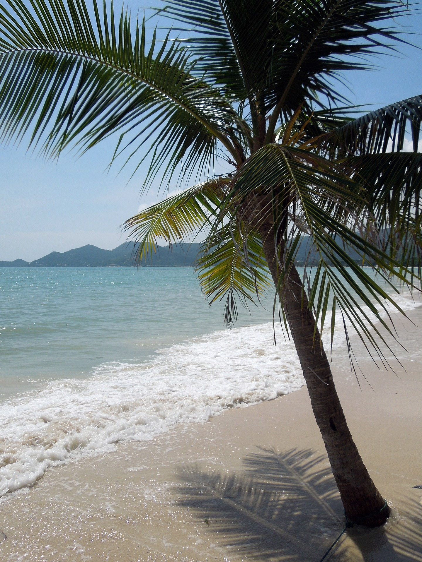samui-1658583_1920 A Koh Samui trip may turn out to be your best ever island holiday.